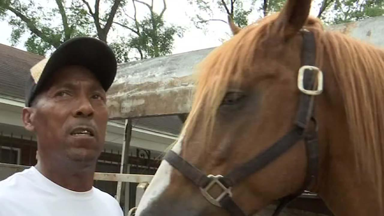Man bit by horse in the neck learning to speak again