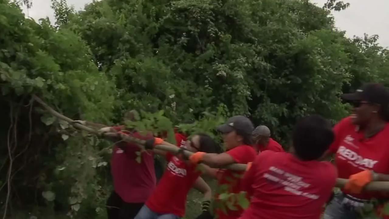 Hundreds help restore Inwood Park after fire
