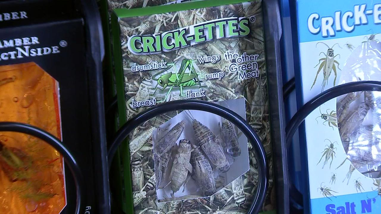 Vending machine at HMNS serves insects as snacks