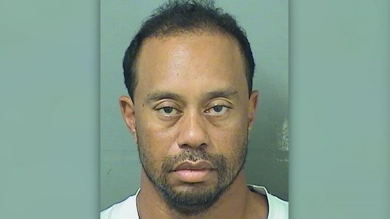 Woods was asleep the wheel, according to arrest affidavit