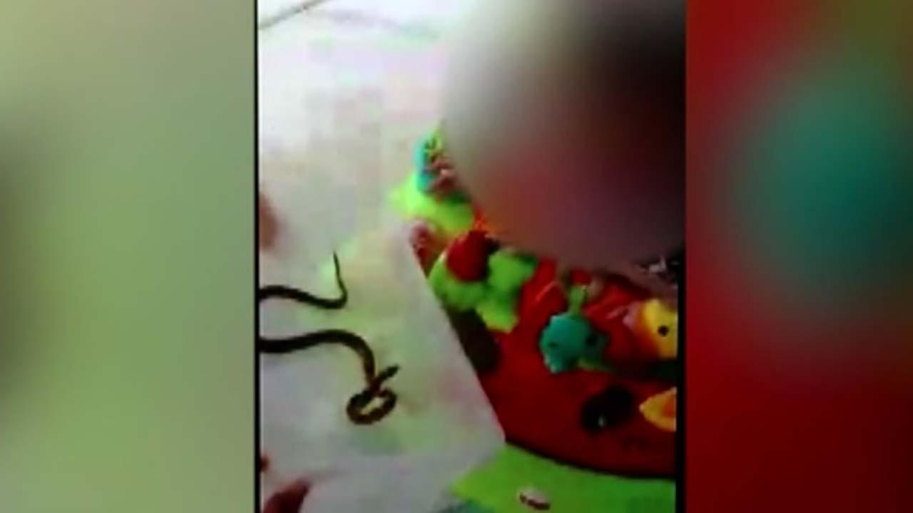 Mom underfire after baby with snake video