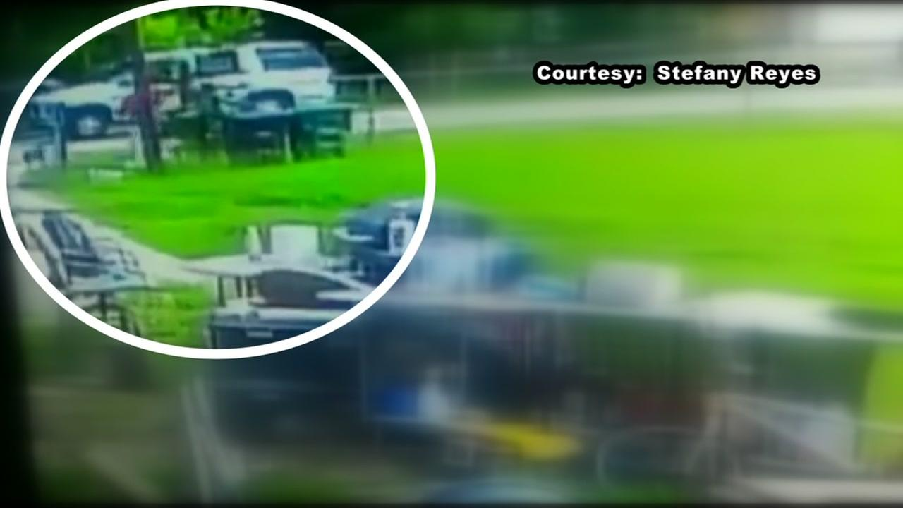 Man caught on camera snatches dog from backyard in North Houston