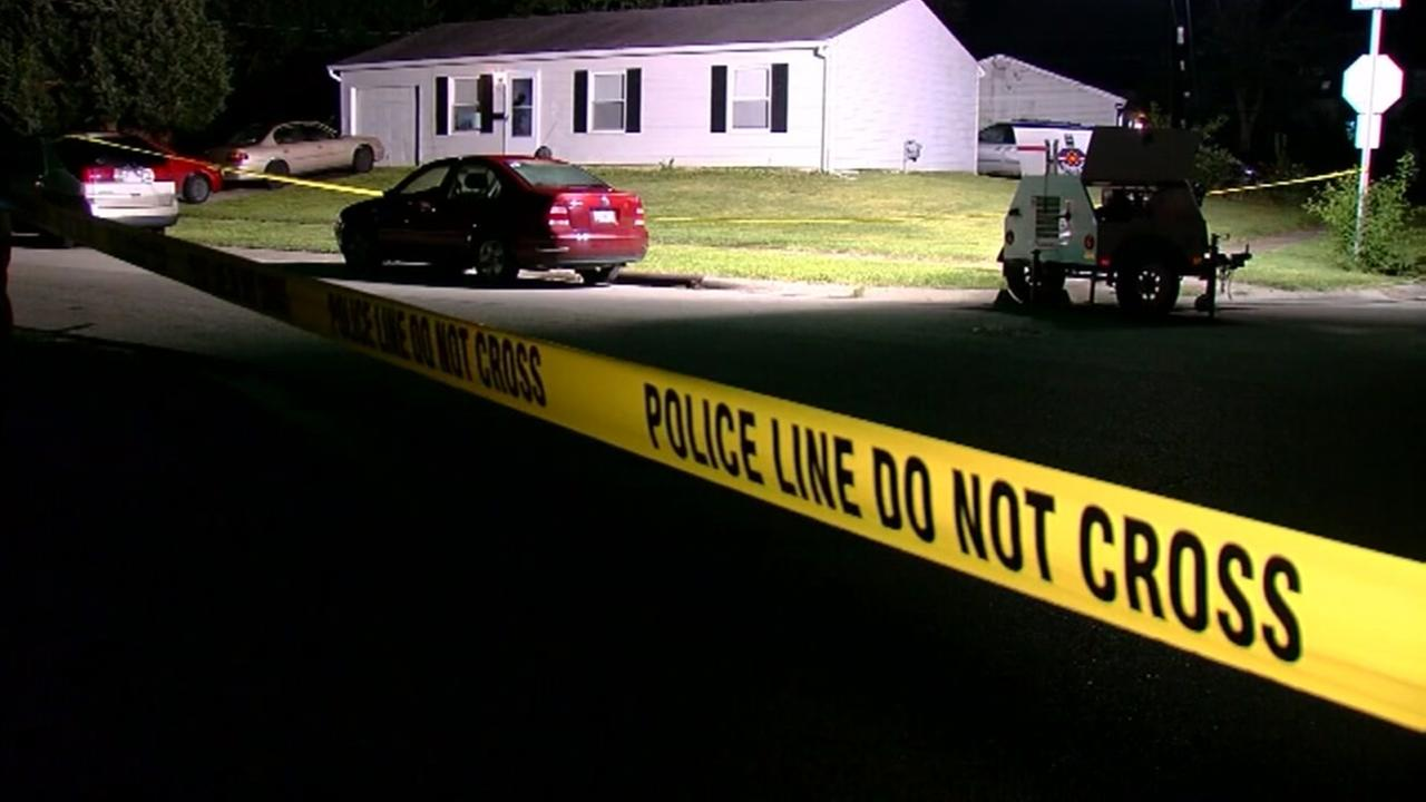 Woman shot at her gender-reveal party wasnt pregnant, police say