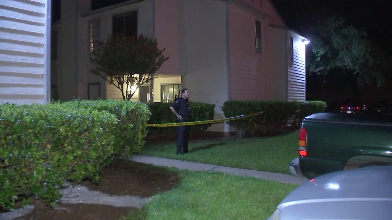 Young man shot to death in Clute apartment