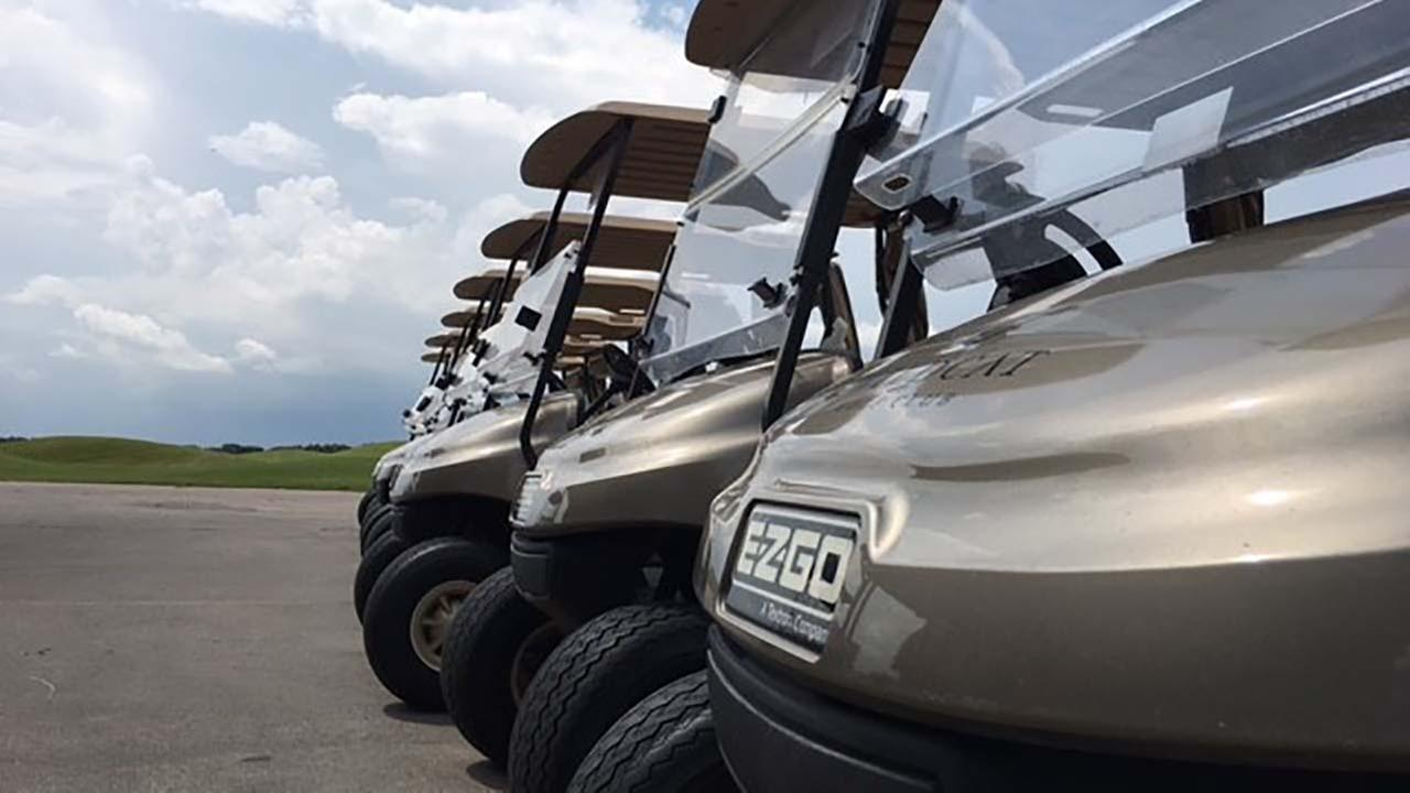 Thieves steal golf carts from golf club