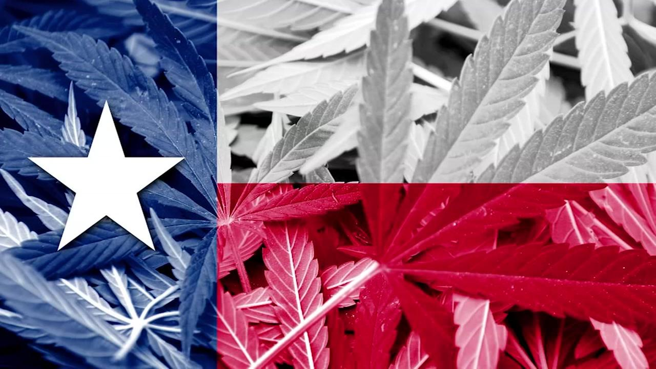 Texas grants license to first medical marijuana producer in the state