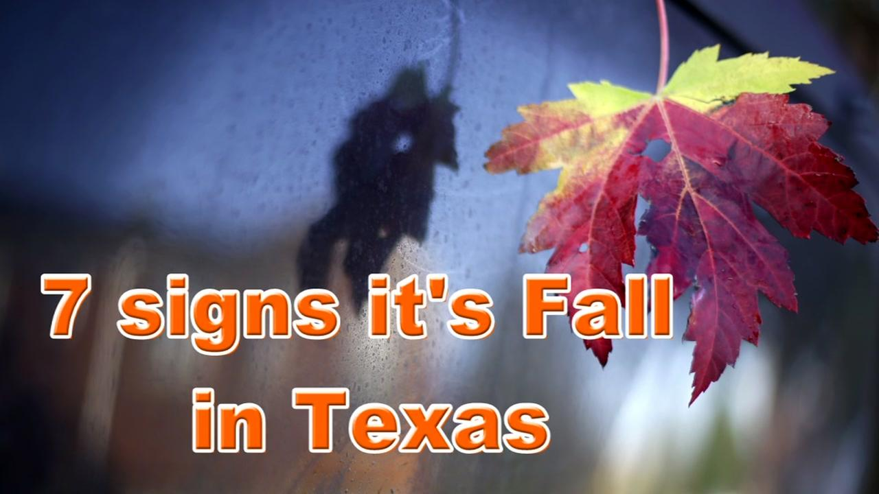 7 signs its Fall in Texas
