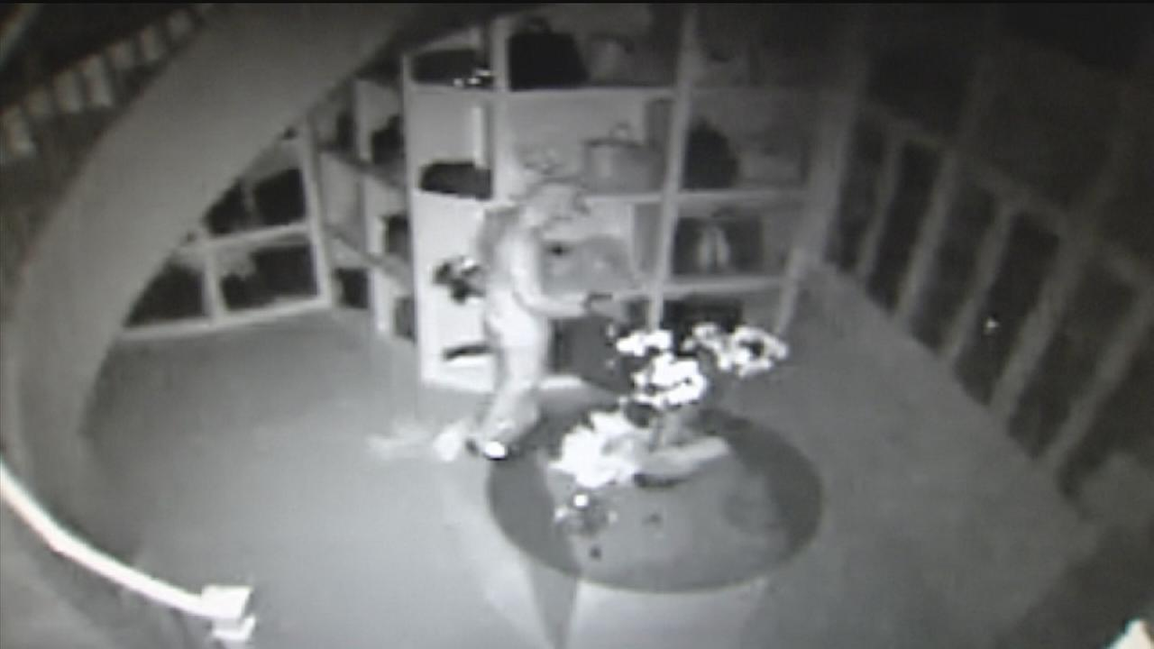 Surveillance video released of closet burglary