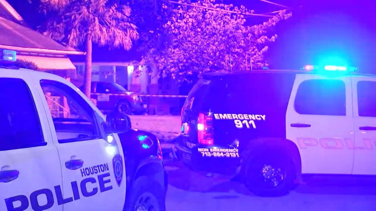 Police say woman shot her boyfriend after he hit her