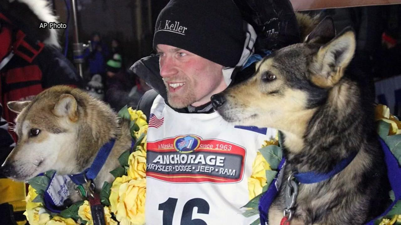Four-time Iditarod winner denies giving dogs banned pain killer