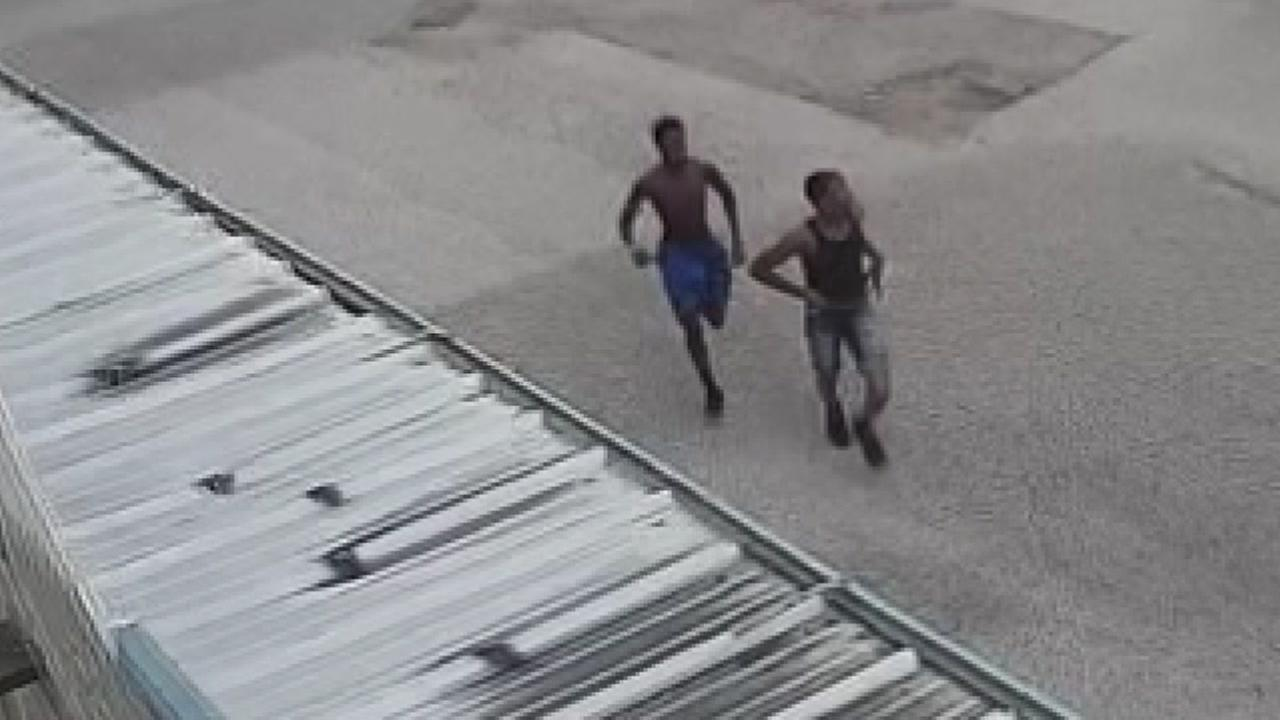 Purse snatching suspects caught on camera