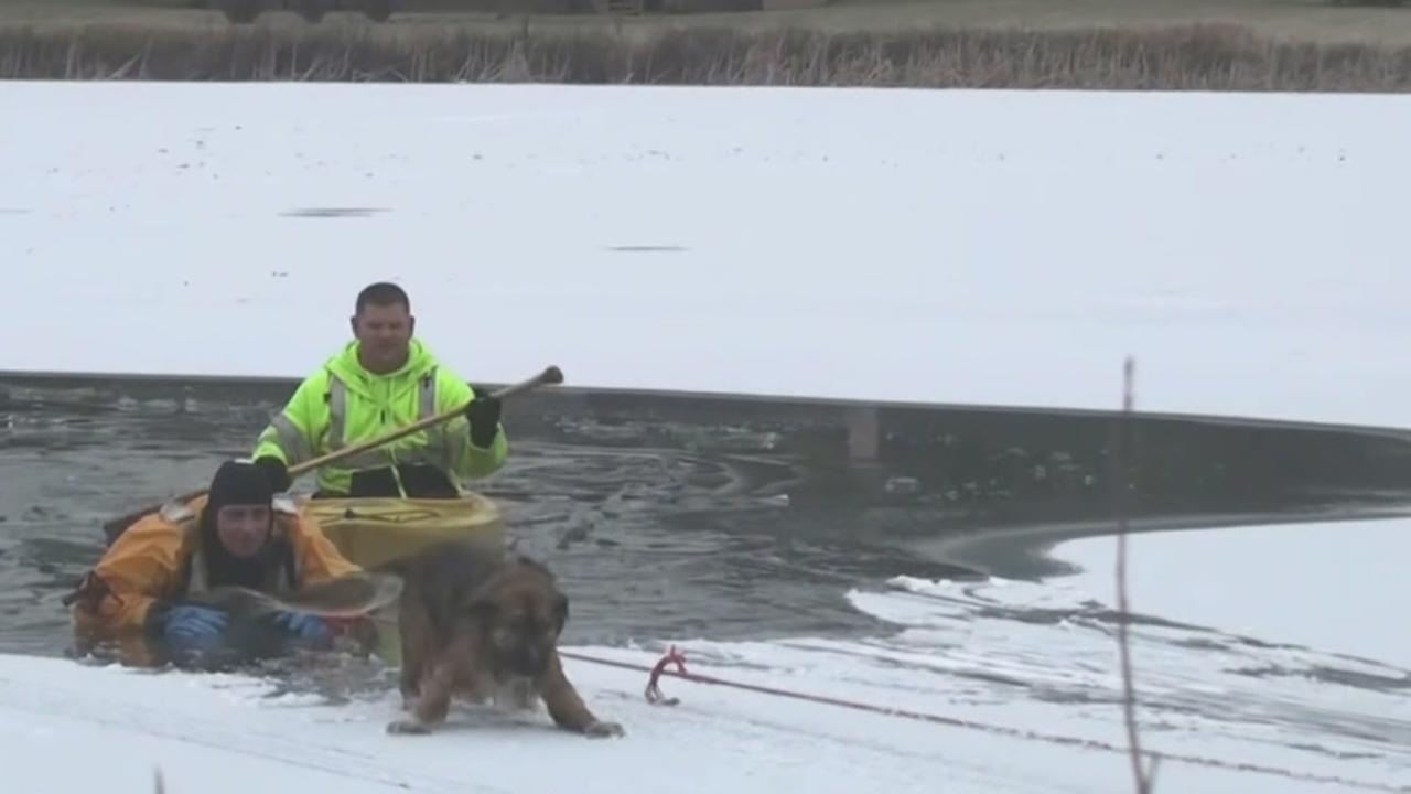 Man, dog icy rescue