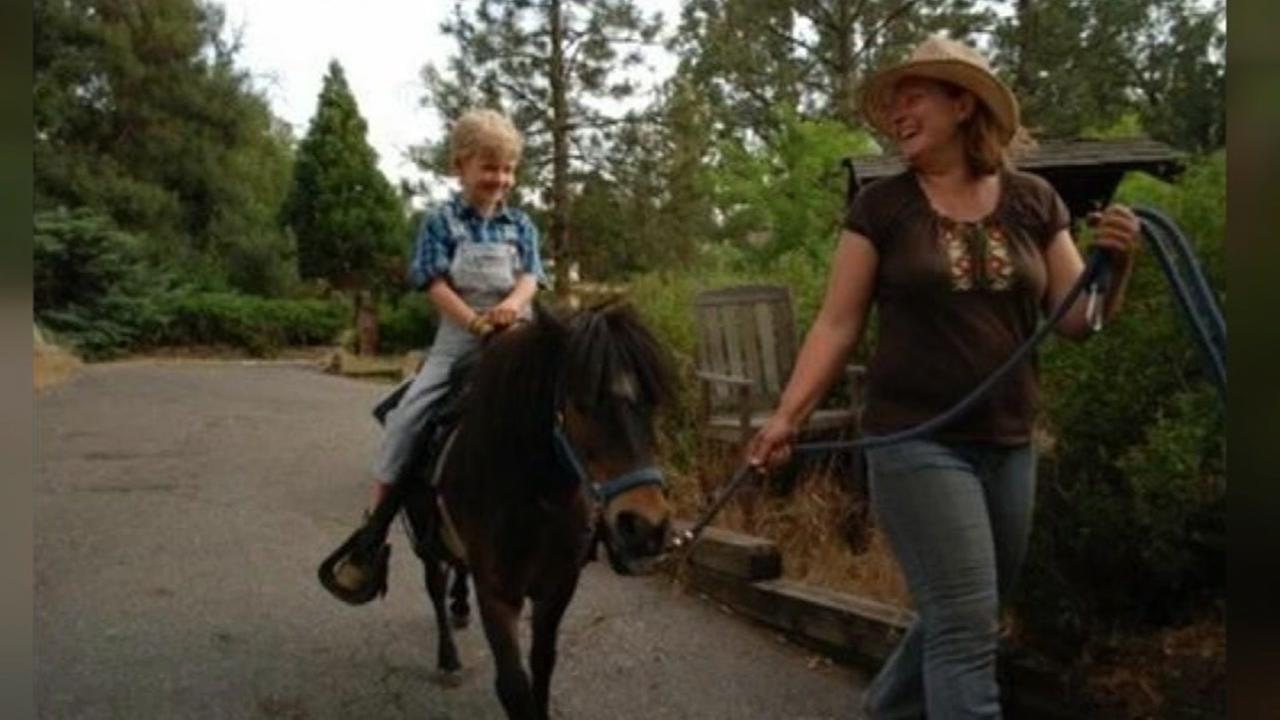 California family offers free pony rides for kids in need