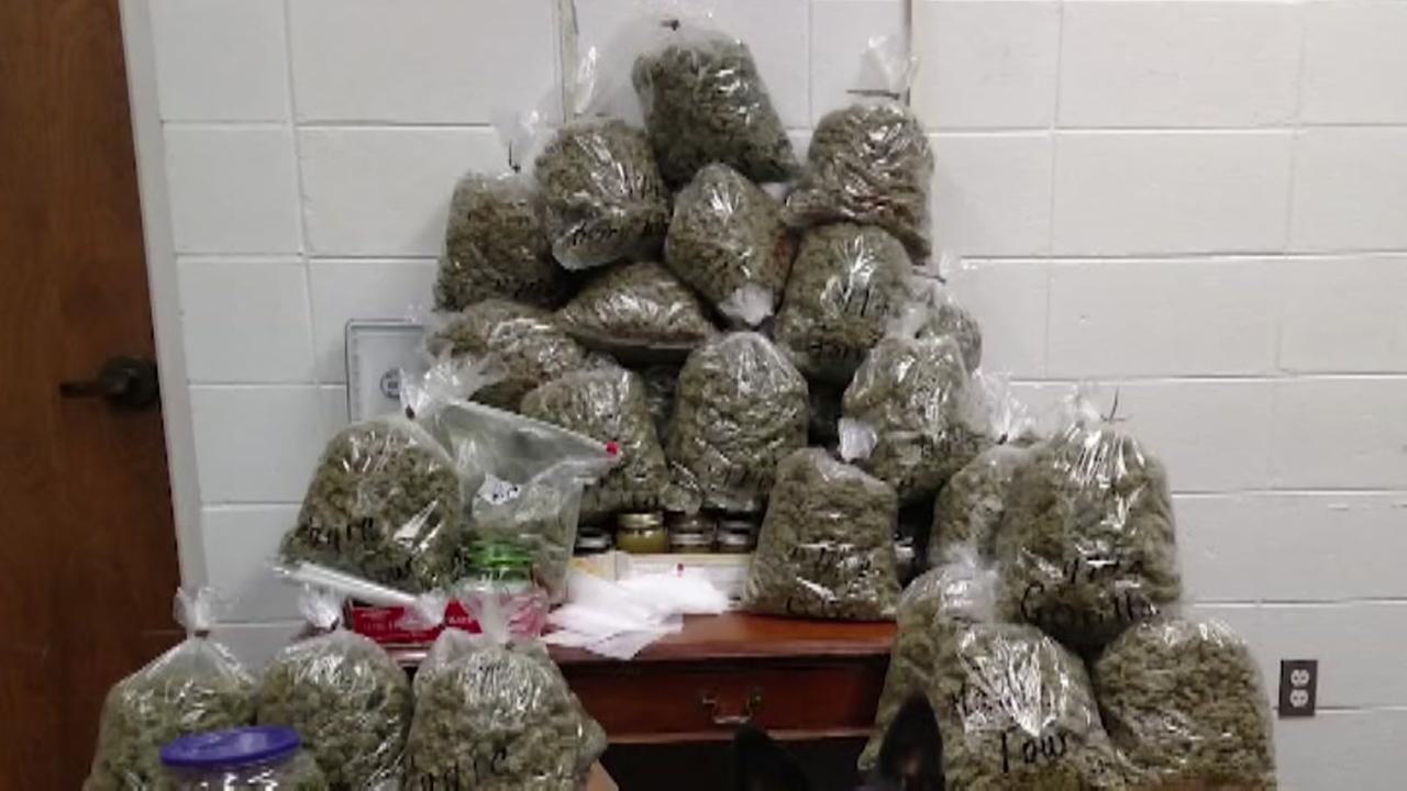 Elderly couple had 60 pounds of marijuana for presents, police say