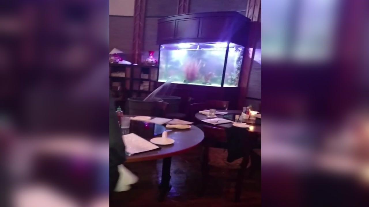 Restaurant staff scramble to catch water from cracked aquarium