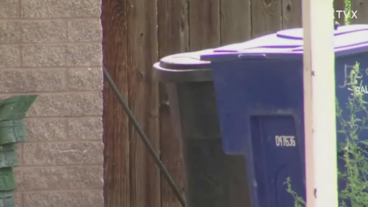 Newborn found in trash can