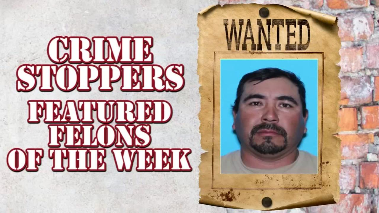 Multi-County Crime Stoppers Featured Felons of the Week