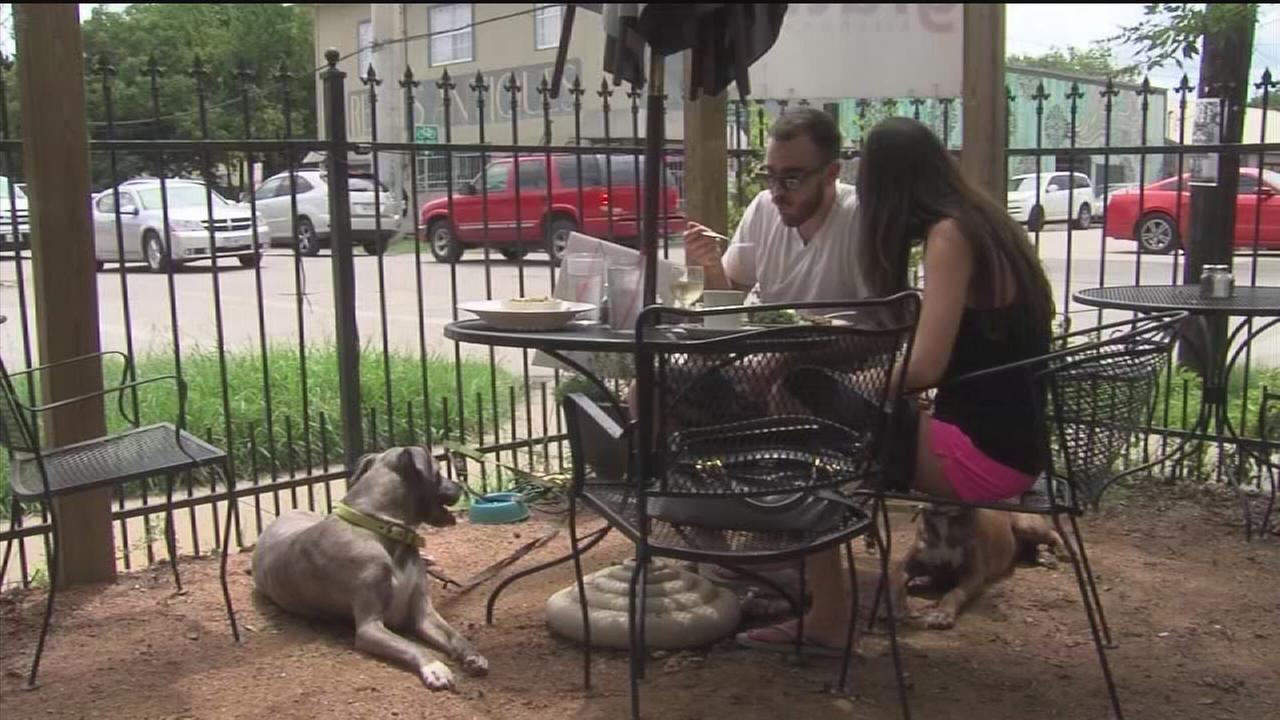 Dog friendly restaurants on the rise in Houston