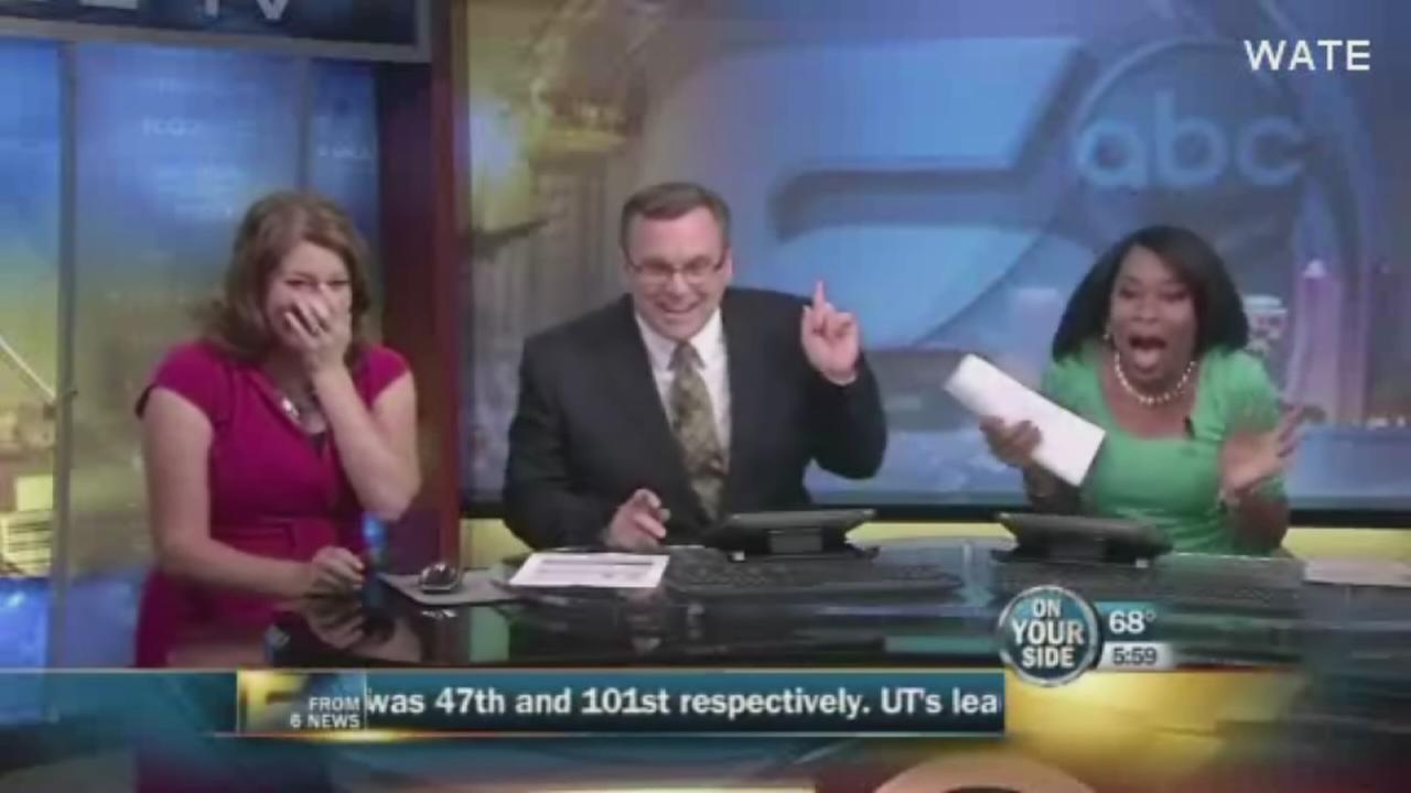 Bat flies through live newscast