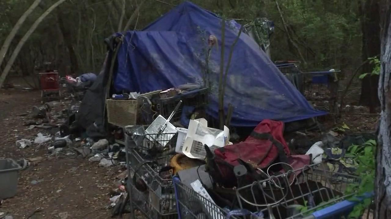 Homeless camp uncovered in Harris County