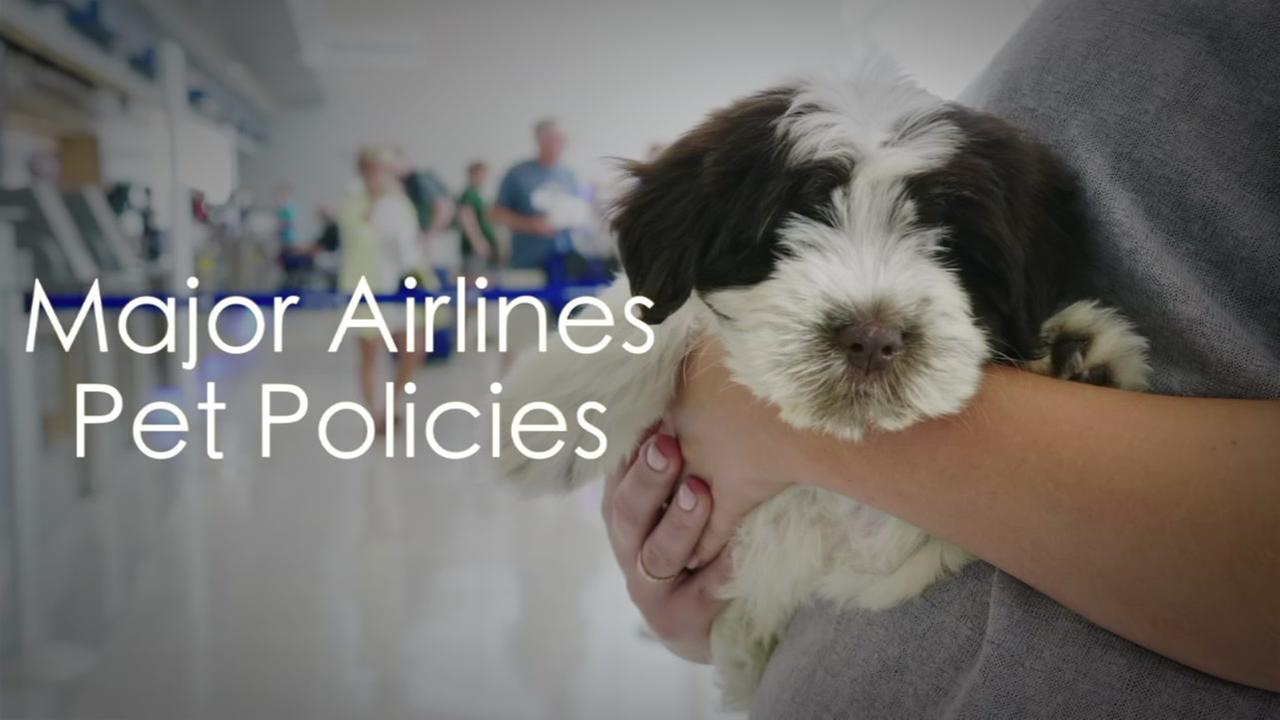 United Airlines updates policy