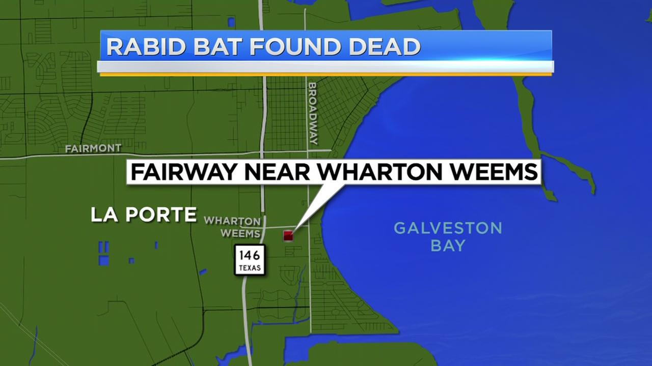 Residents warned after two bats test positive for rabies in La Porte ...