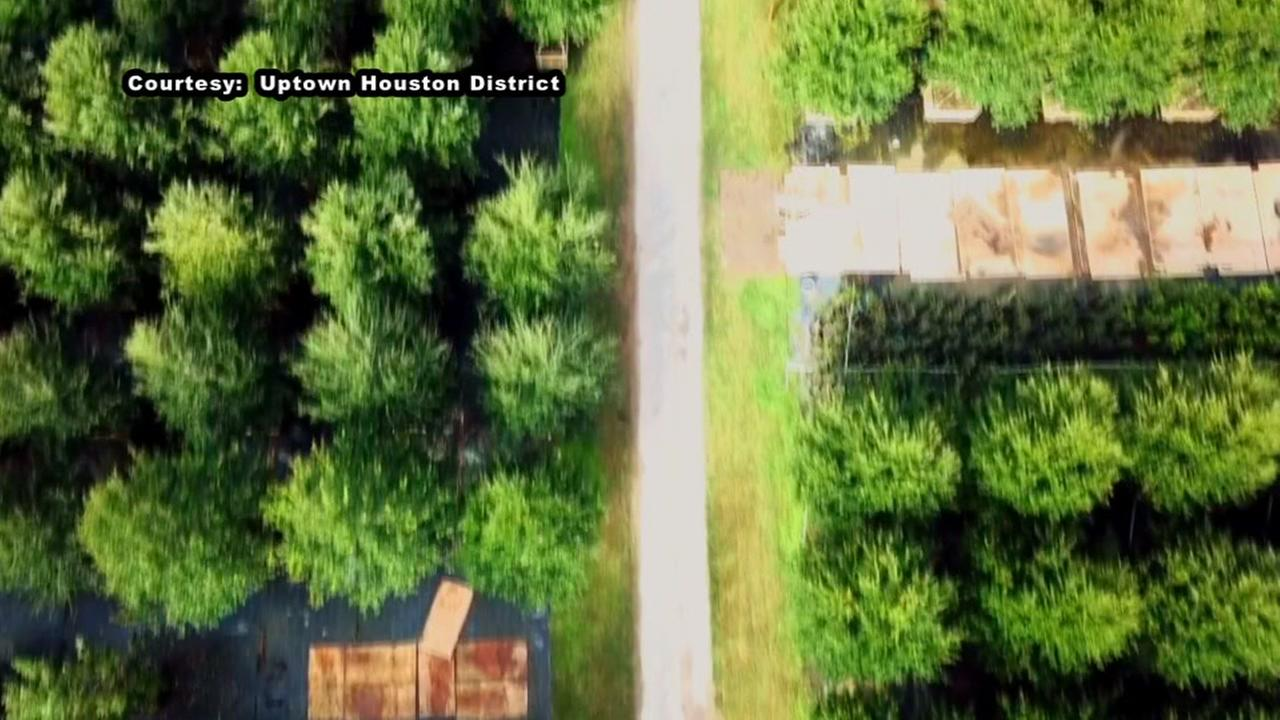 Drone captures tree planting in Houston