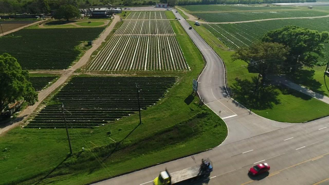 SkyDrone13 over Frobergs Farm