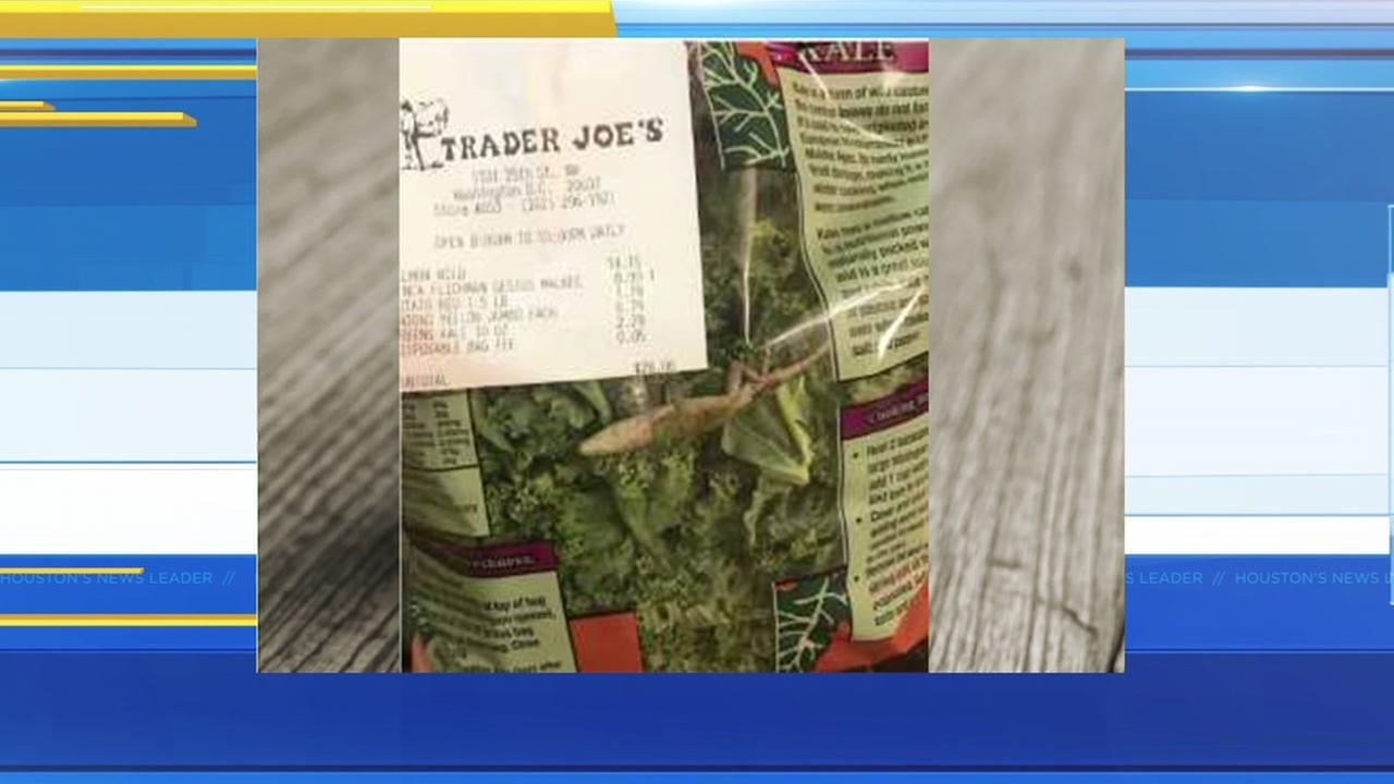 Woman finds dead lizard in bag of kale at Trader Joes