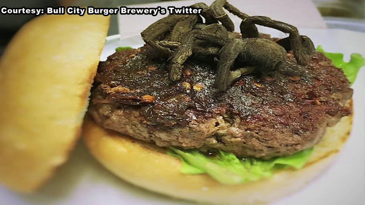 BCBs tarantula burger