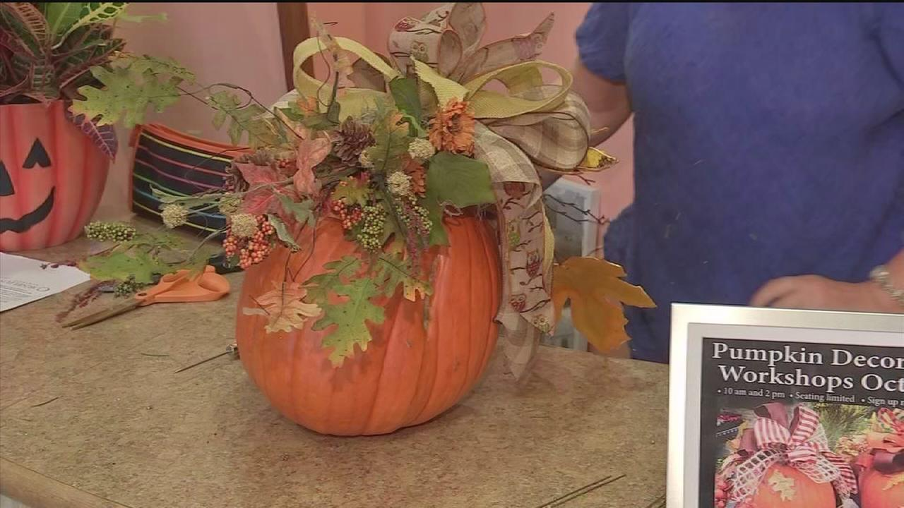 How to decorate pumpkins to last through fall