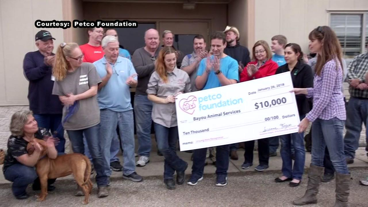 Petco names dickinson woman unsung hero