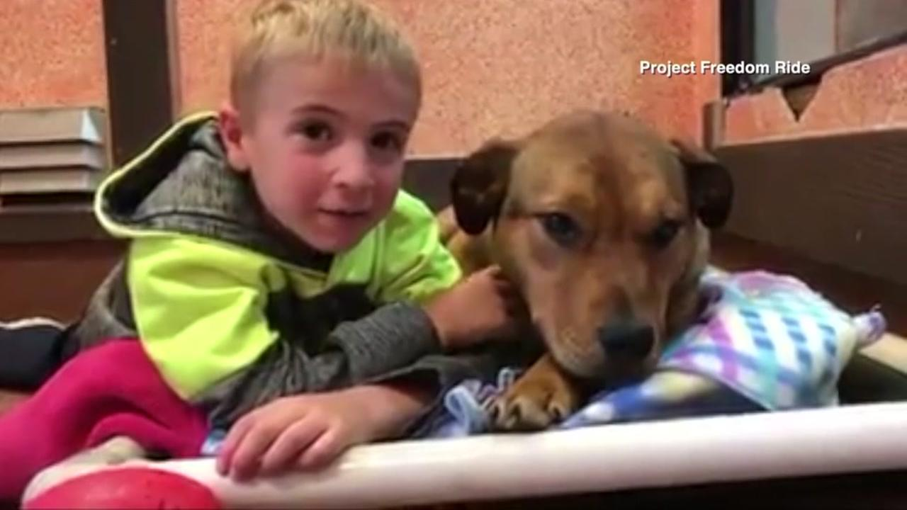 Boy saves 1,000 from being euthanized