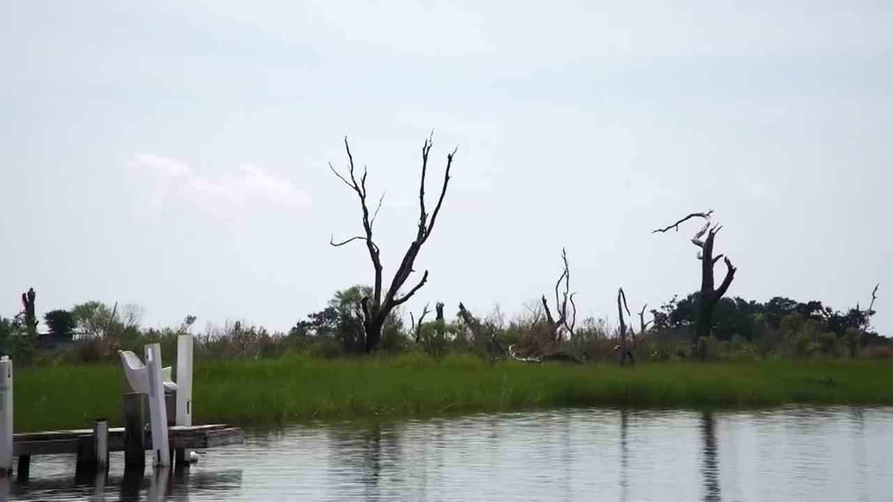Louisiana losing land at alarming rate