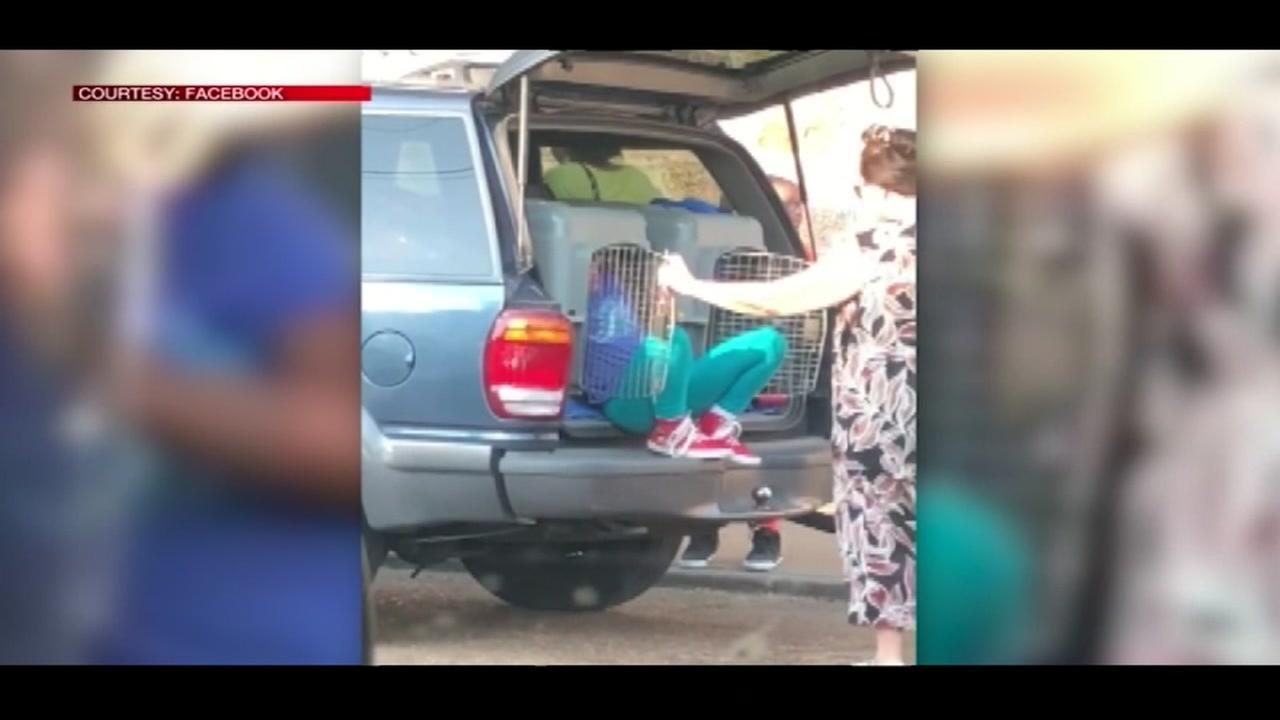Grandmother in court for transporting two young children in pet kennels