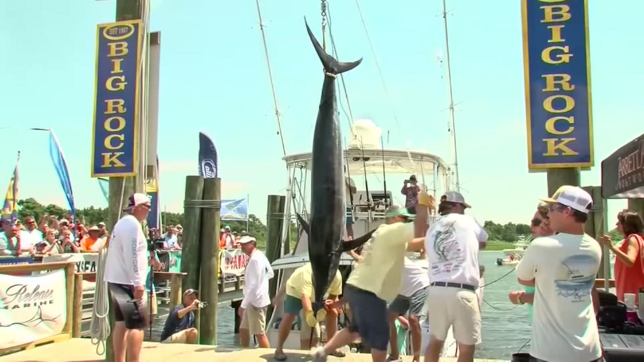 Now theres a catch...all 400 lbs.
