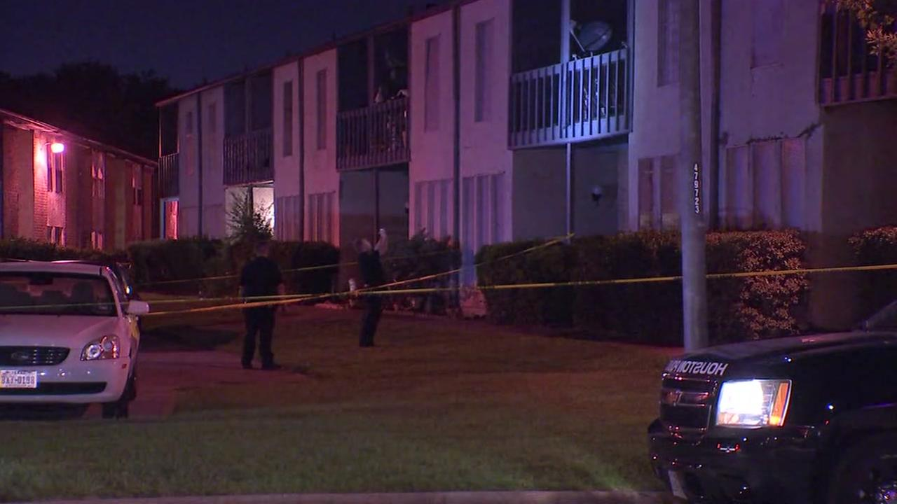 HPD: Suspect shot his ex, man and himself