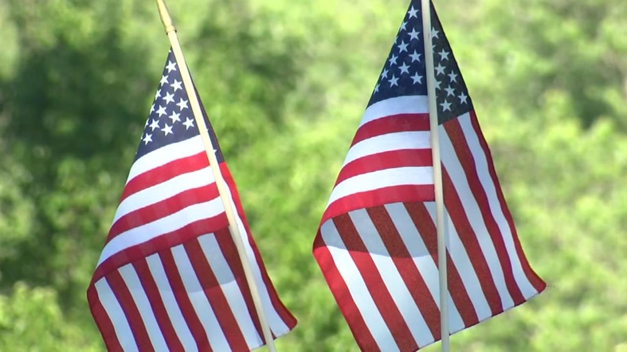 Woodchucks accused of stealing American flags at cemetery