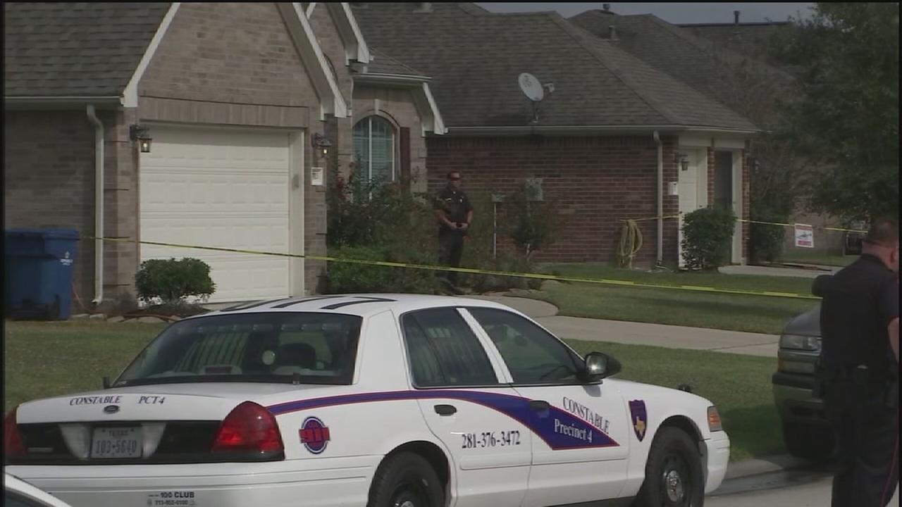 Homeowner shoots burglars