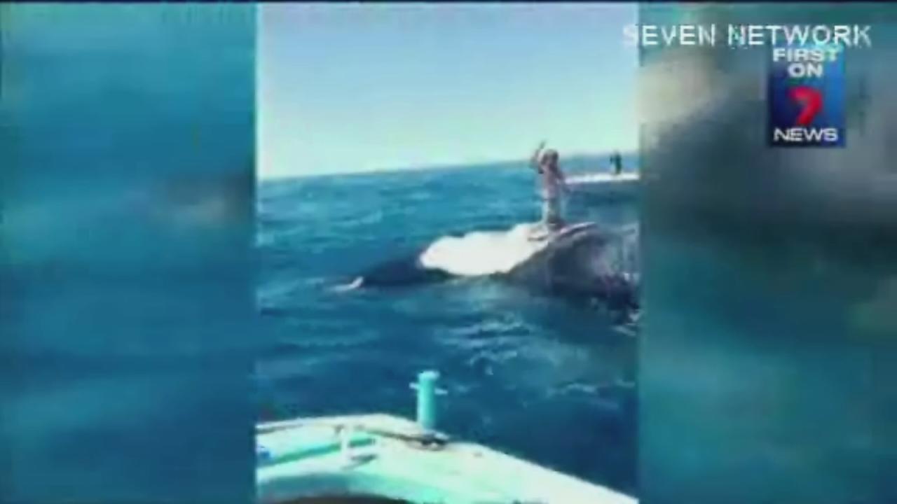 Australian swimmer pulls dangerous stunt