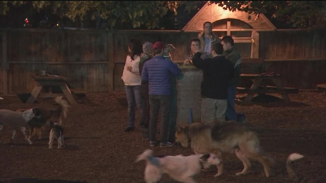 Popular dog park, bar closing its doors