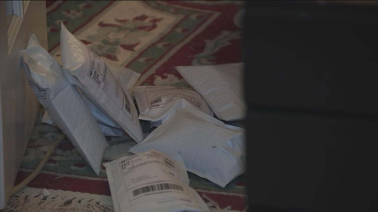 eBay seller blames USPS for stalled deliveries