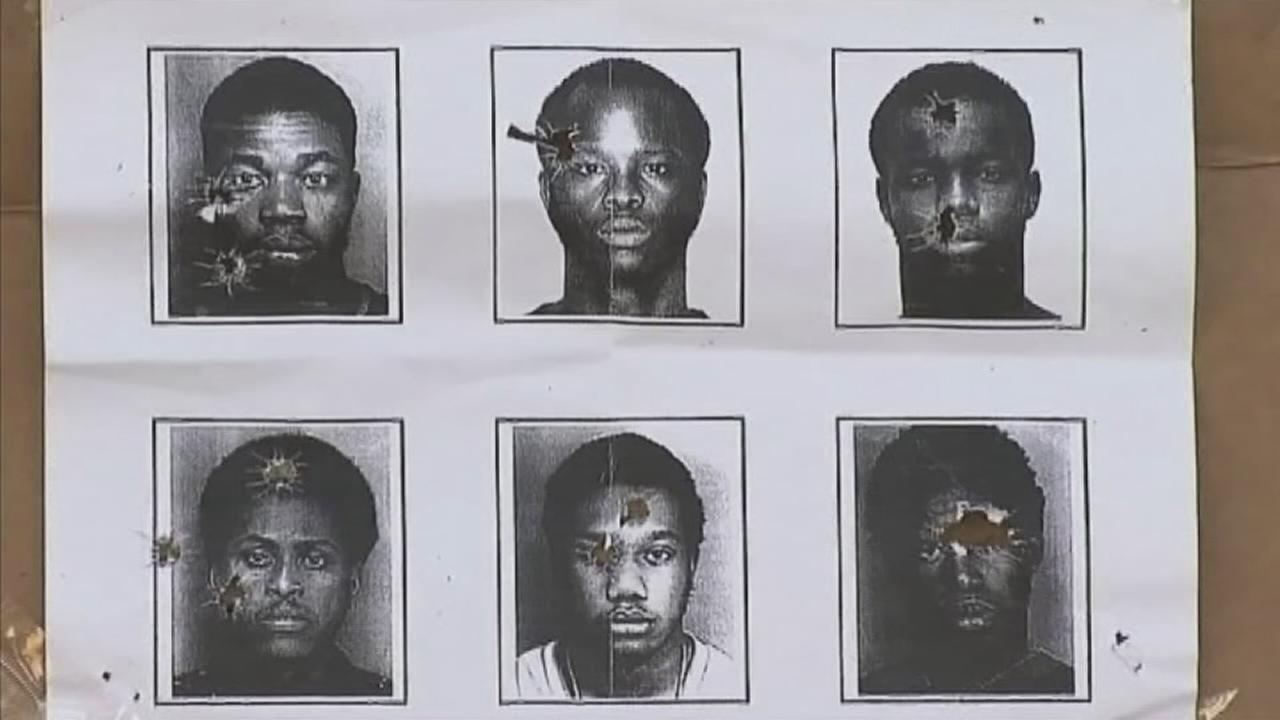 Mug shots used for target practice