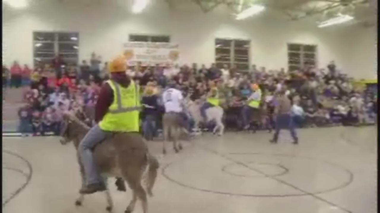 Donkey basketball for a good cause