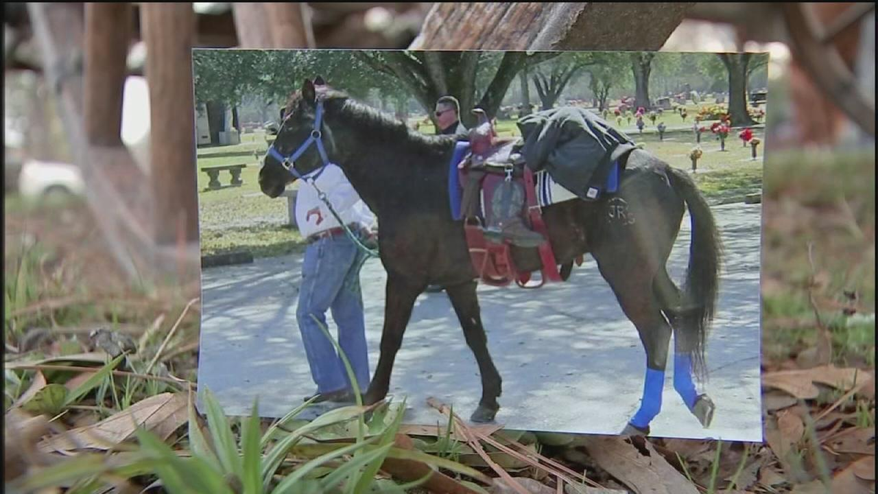 Groups horse goes missing during rodeo trail ride