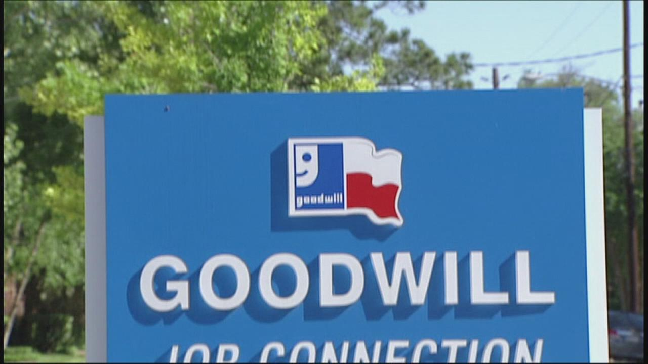 Goodwill, Segment 3