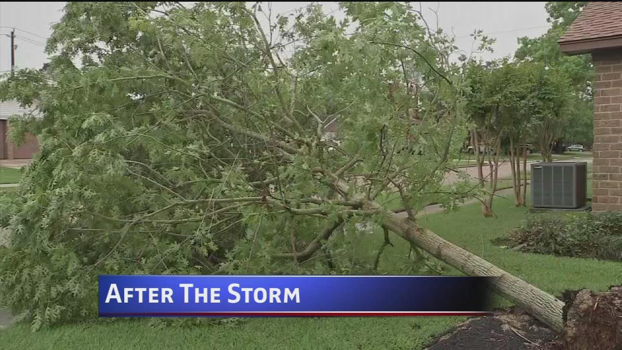 Storms leave mess behind
