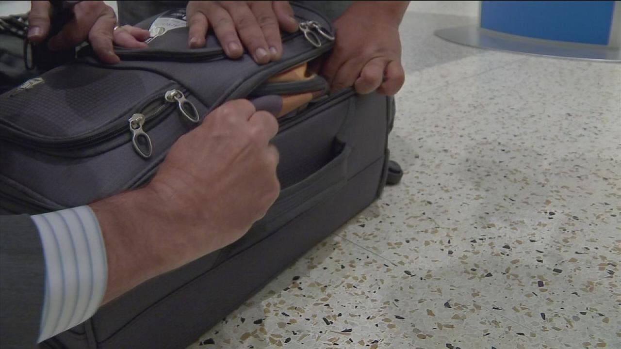 Airline industry eyes creating universal carry-on bag size