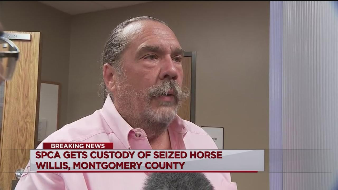 SPCA gets custody of horses seized from Conroe farm