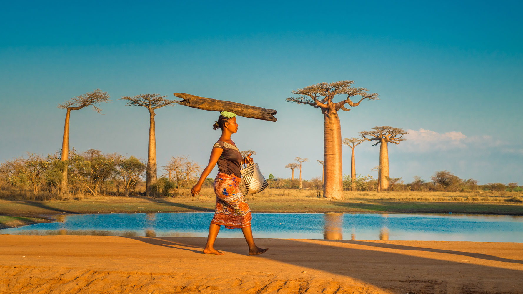 "<div class=""meta image-caption""><div class=""origin-logo origin-image none""><span>none</span></div><span class=""caption-text"">A Woman carries a log on her head on Avenue of the Baobabs, Madagascar. (Shutterstock)</span></div>"